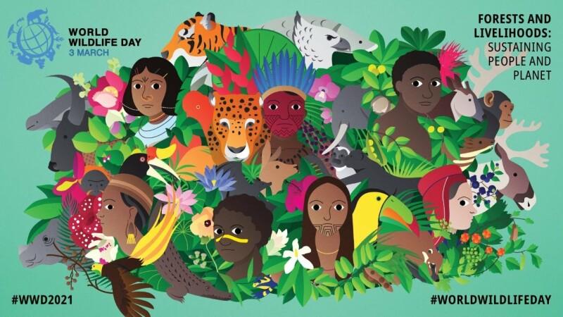شعار روز جهانی حیات وحش در سال 2021، «جنگلها و معیشتها: پایداری مردم و سیاره» است.