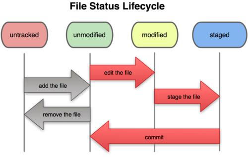 چرخه زندگی وضعیت فایل ها در گیت